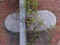 House of the Blind - Garden ZA