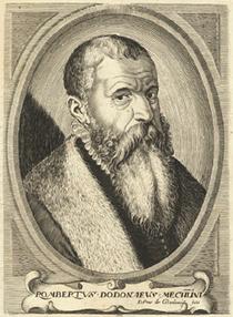 Rombaud Dodonee