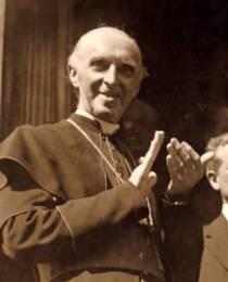 Cardinal D. J. Mercier