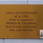A. Aygueparse